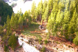 Kicking Horse Canyon - Golden